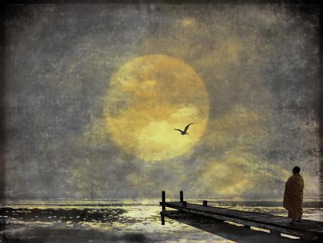 moon-ii-h-kopp-delaney