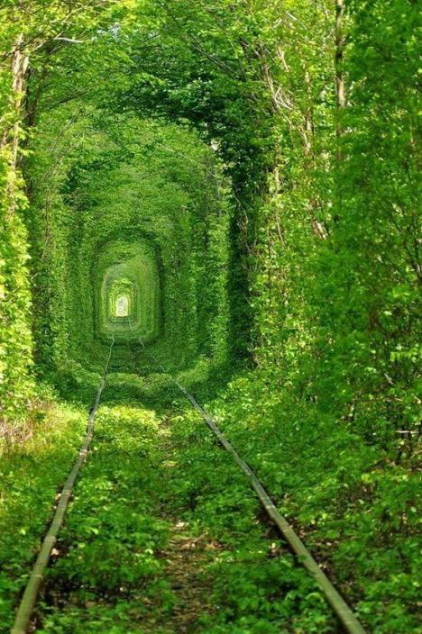 Abandoned Tunnel of Love