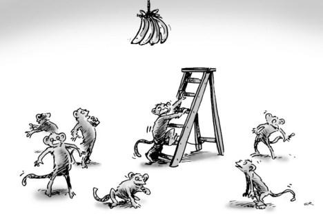 scimmie-e-scala